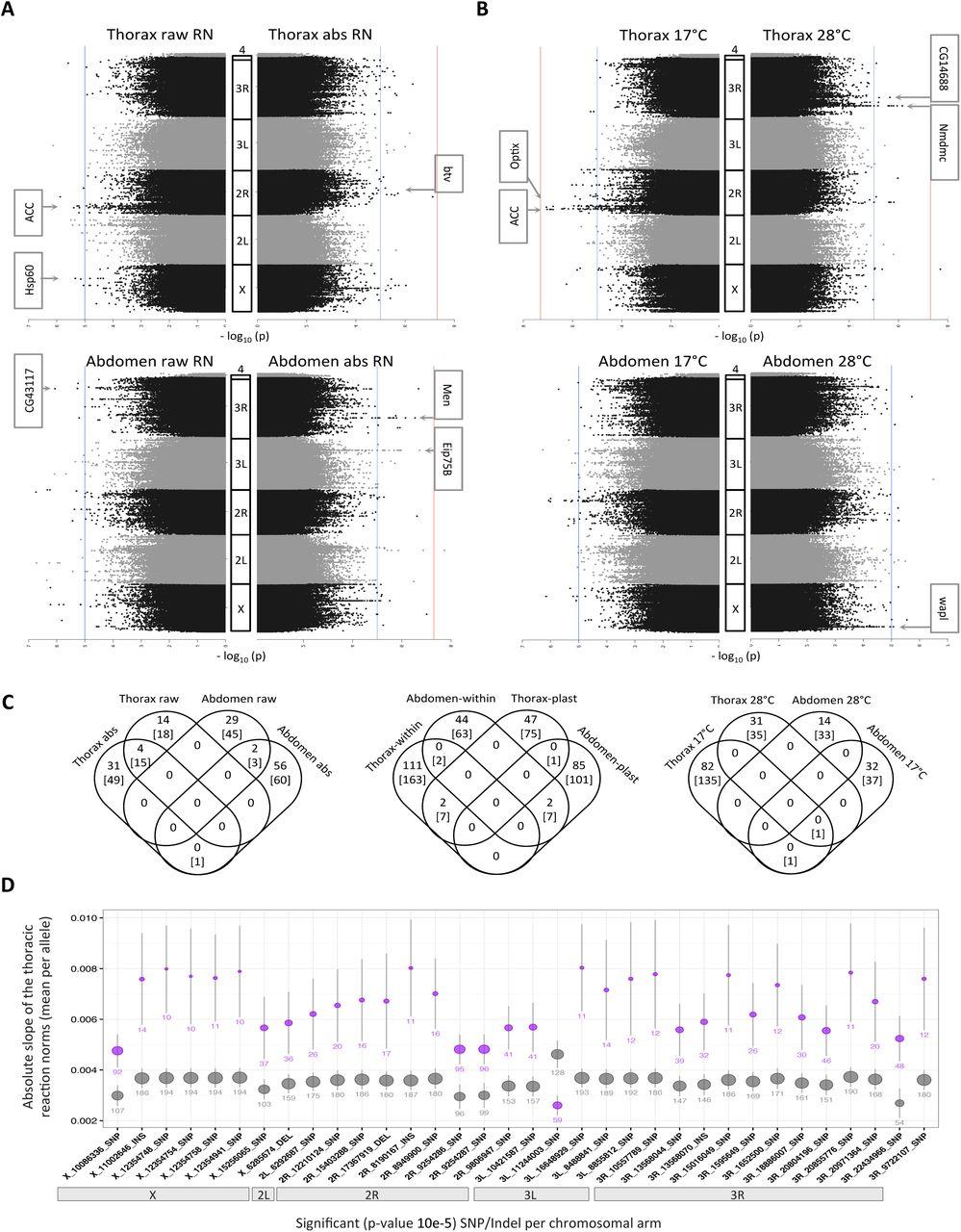 Genetic basis of thermal plasticity variation in Drosophila