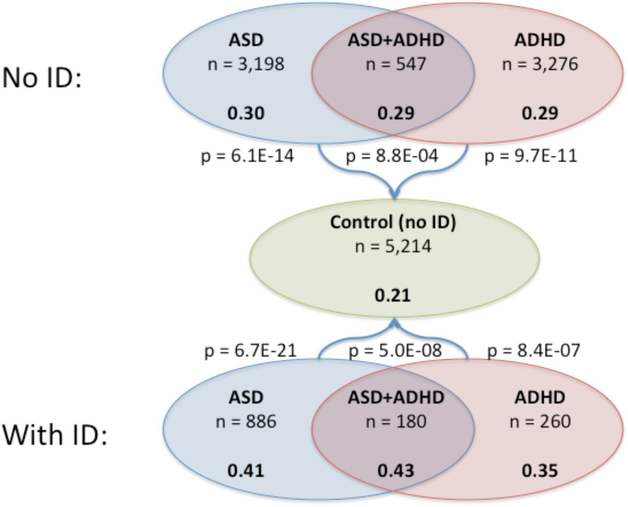 ASD and ADHD have a similar burden of rare protein