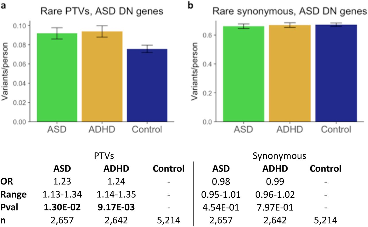 First Genetic Map Of Attention Deficit >> Asd And Adhd Have A Similar Burden Of Rare Protein Truncating