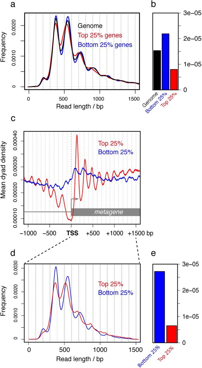 Genome-wide measurement of local nucleosome array regularity