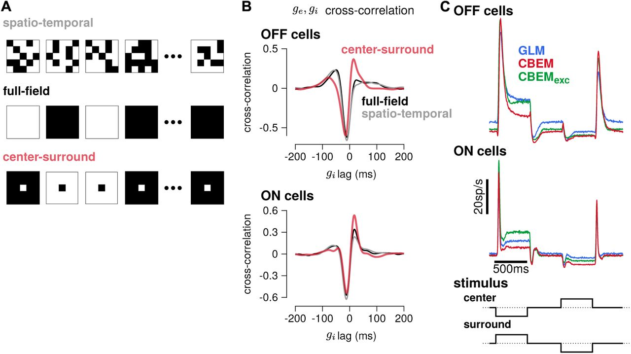 Inferring synaptic inputs from spikes with a conductance-based