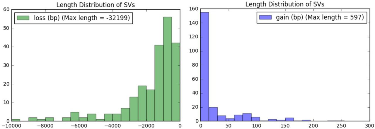 Fast and Accurate Genomic Analyses using Genome Graphs | bioRxiv