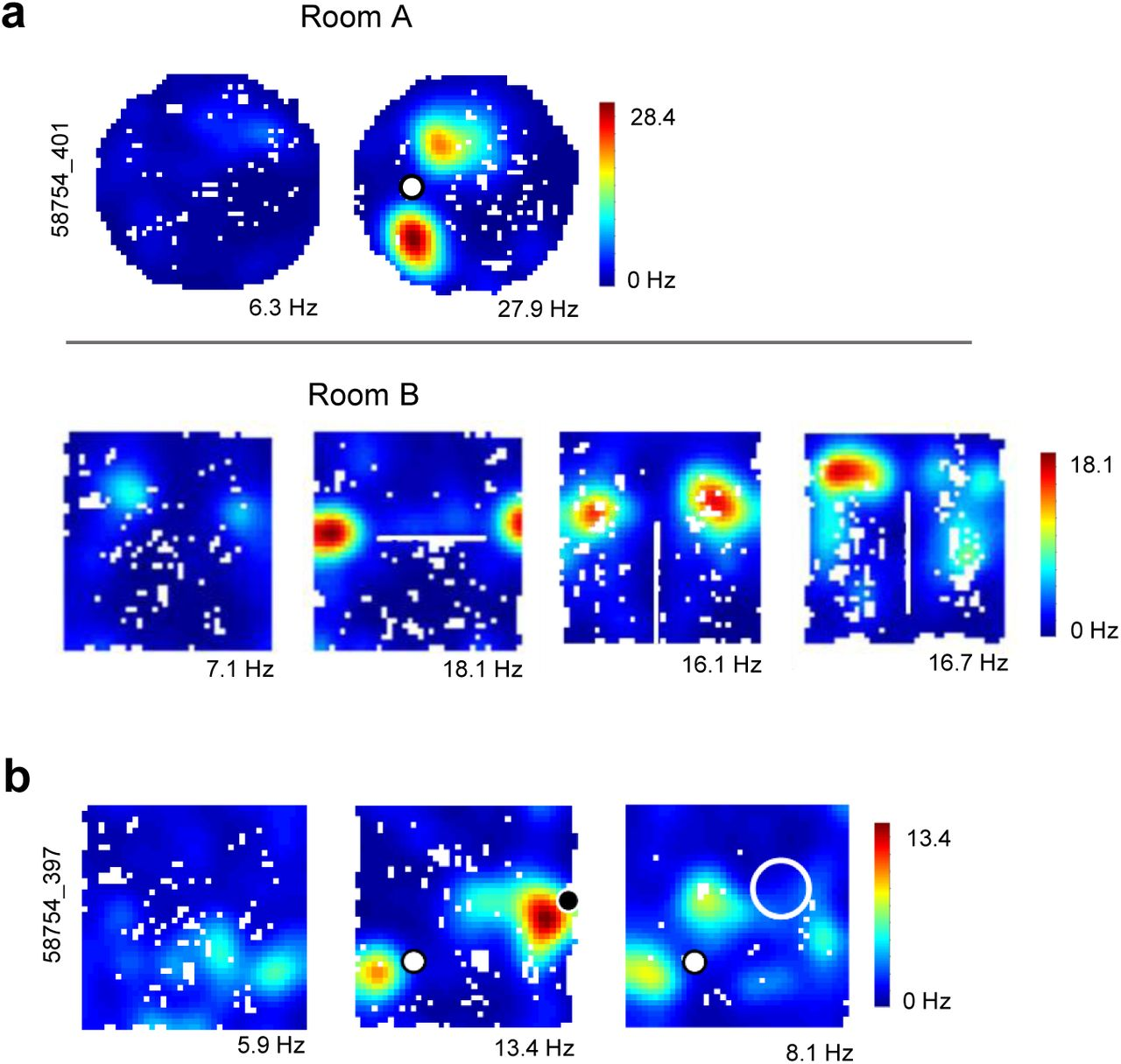 Object-vector coding in the medial entorhinal cortex | bioRxiv