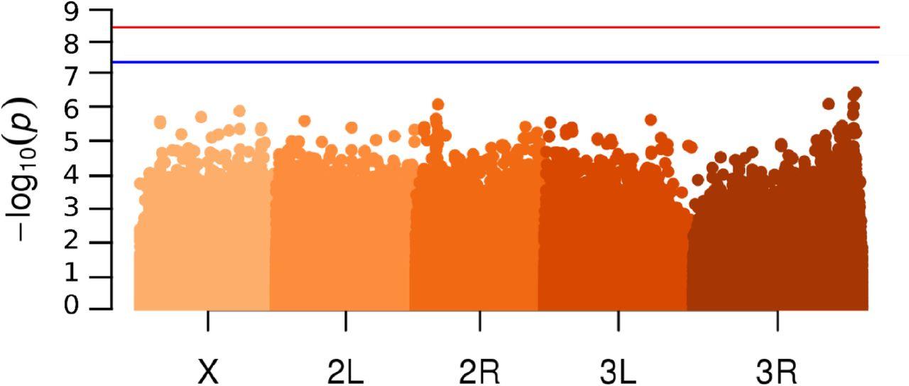 carbon sexual encounters in orange