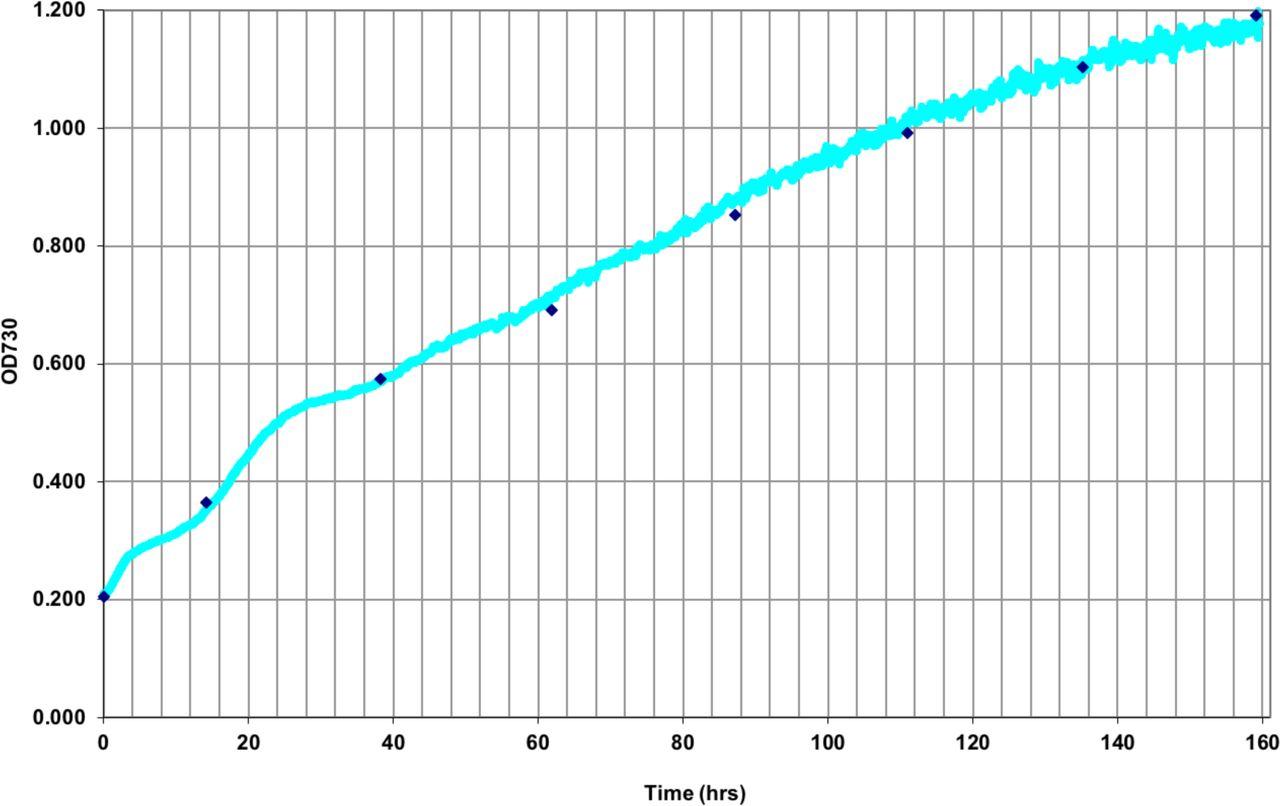 Optimizing bioreactor growth of the smallest eukaryote   bioRxiv