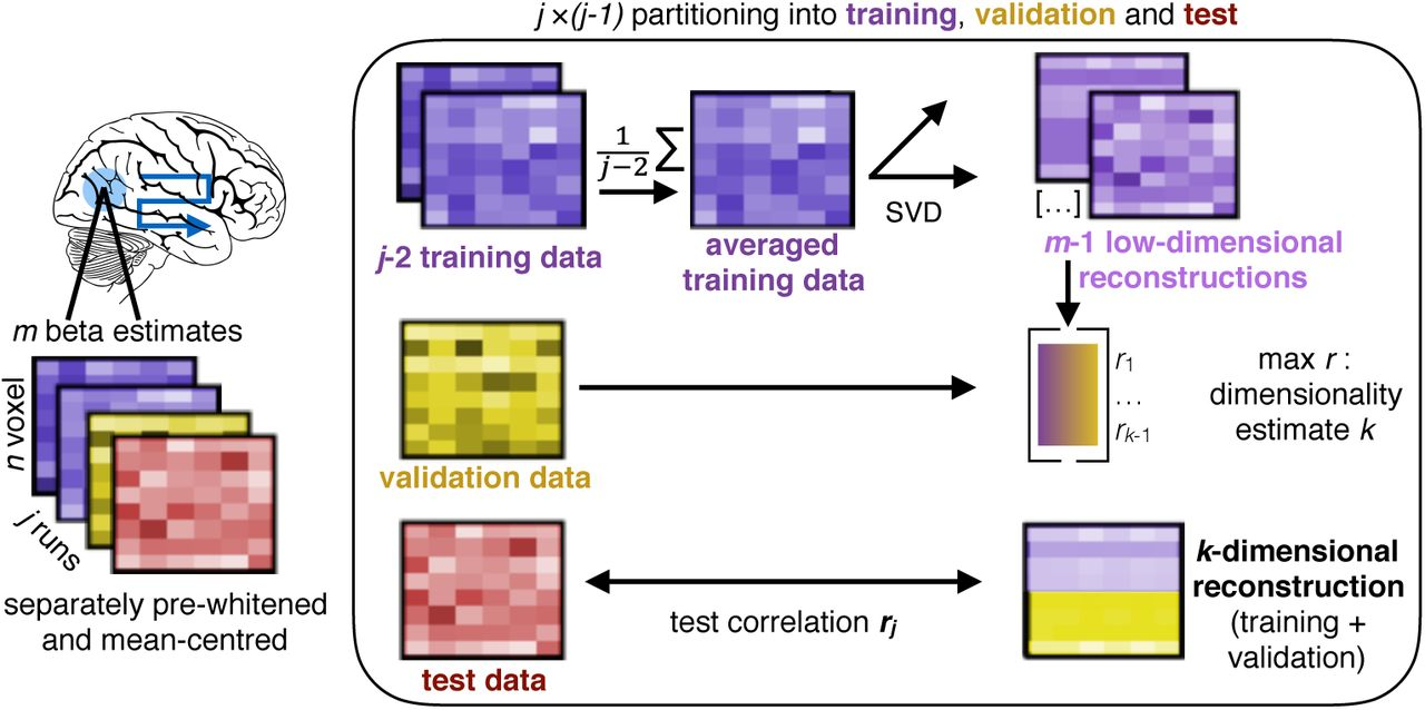 Estimating the functional dimensionality of neural representations
