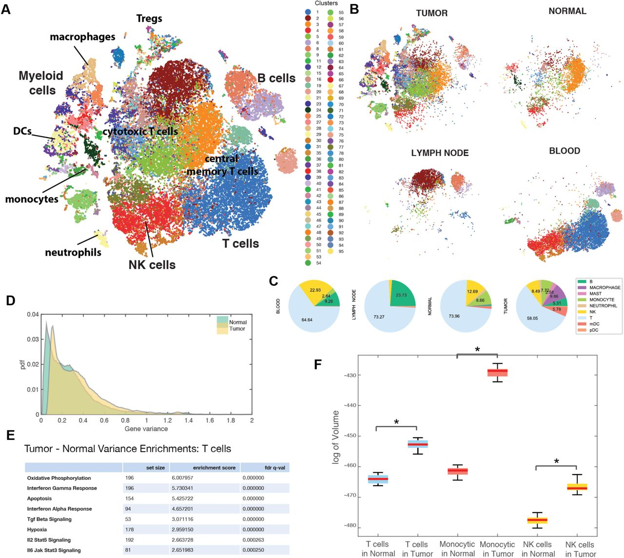Single-cell Map of Diverse Immune Phenotypes Driven by the
