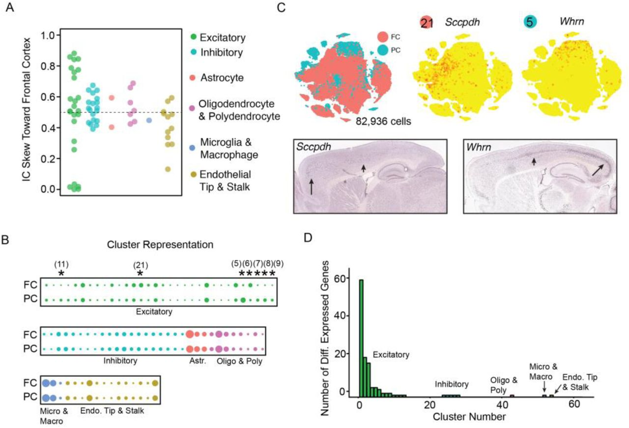 A Single-Cell Atlas of Cell Types, States, and Other
