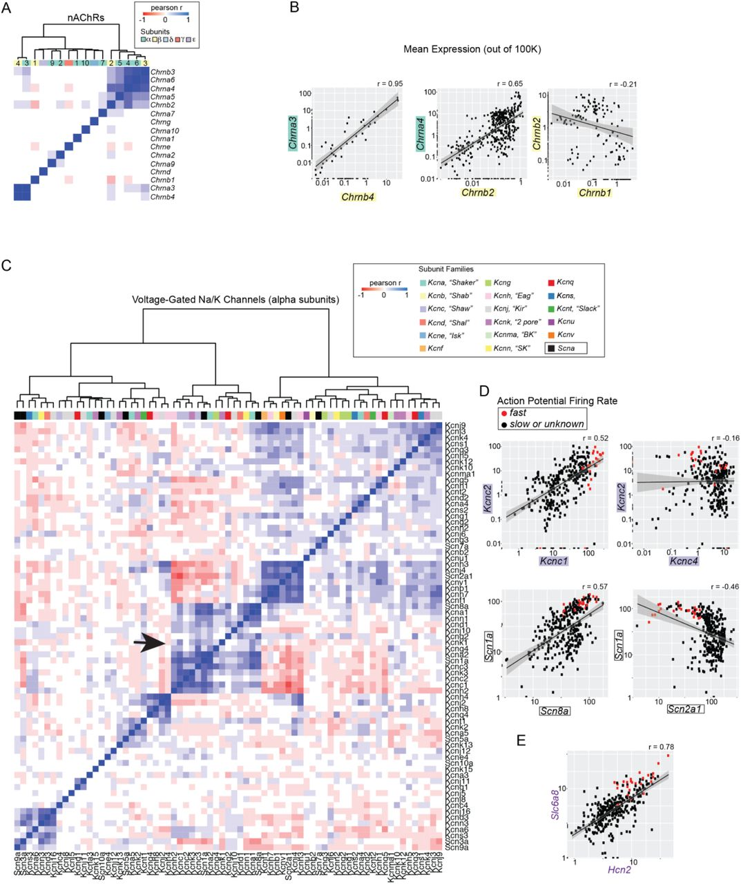 A Single-Cell Atlas of Cell Types, States, and Other Transcriptional