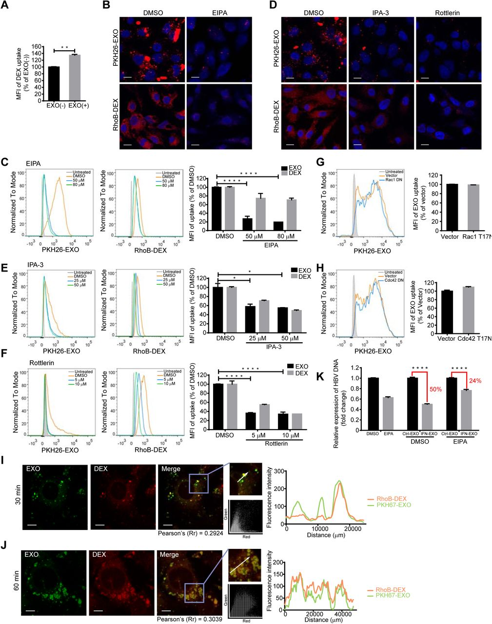 Exosomes exploit the virus entry machinery and pathway to