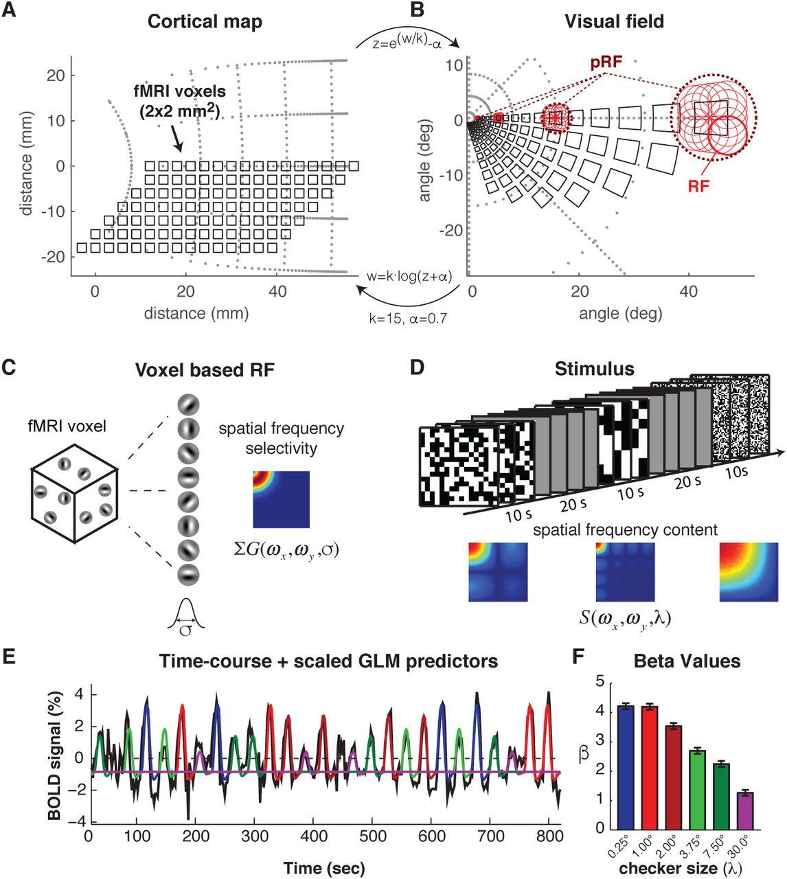 Measuring single neuron visual receptive field sizes by fMRI