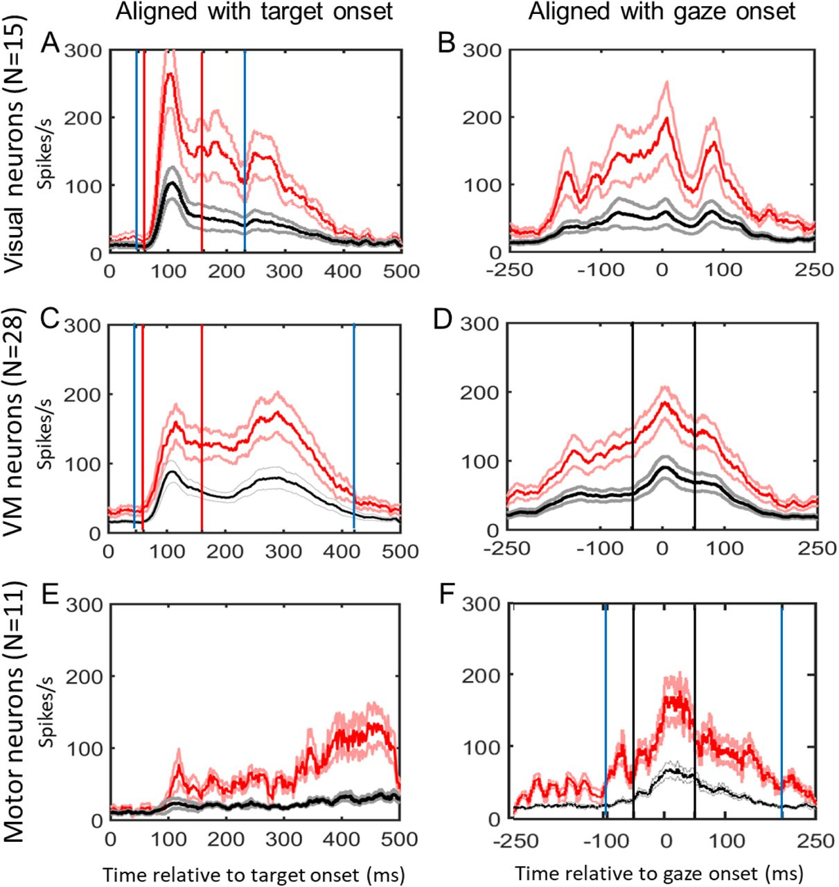 Timing Determines Tuning: a Rapid Spatiotemporal Transformation in