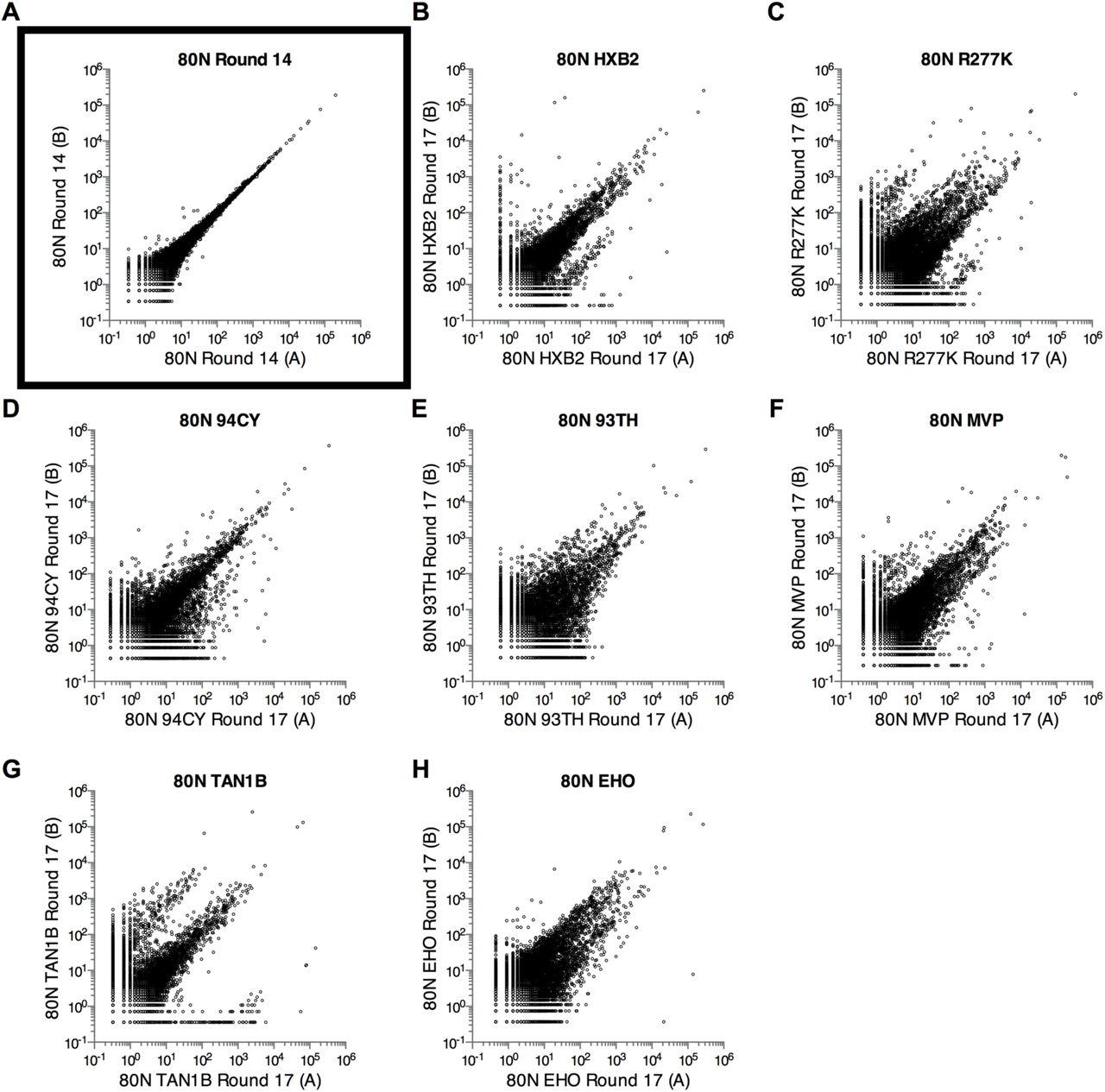c298421b518 Poly-Target Selection Identifies RNA Broad-Spectrum Inhibitors of ...
