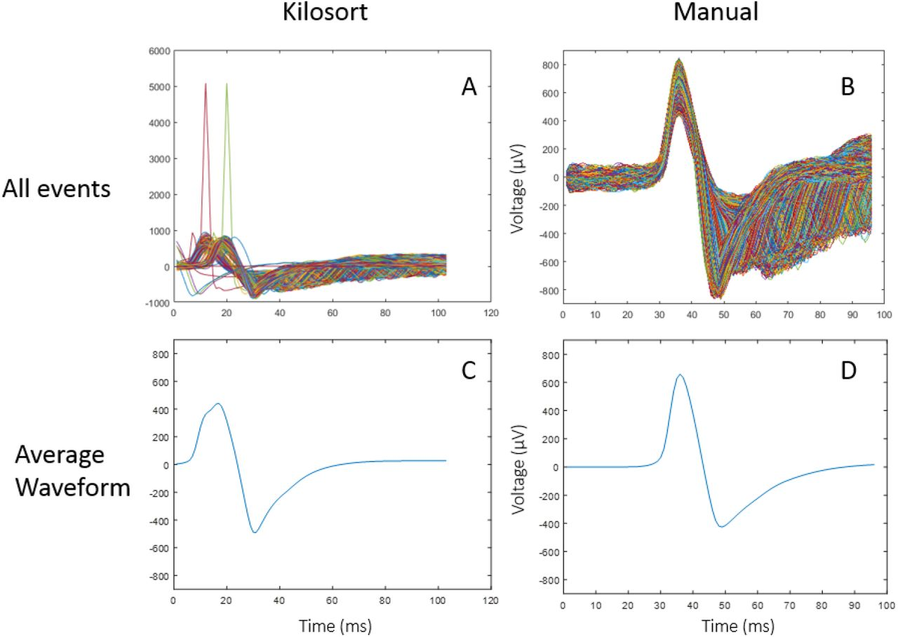 Efficient sorting of single-unit activity from midbrain cells using