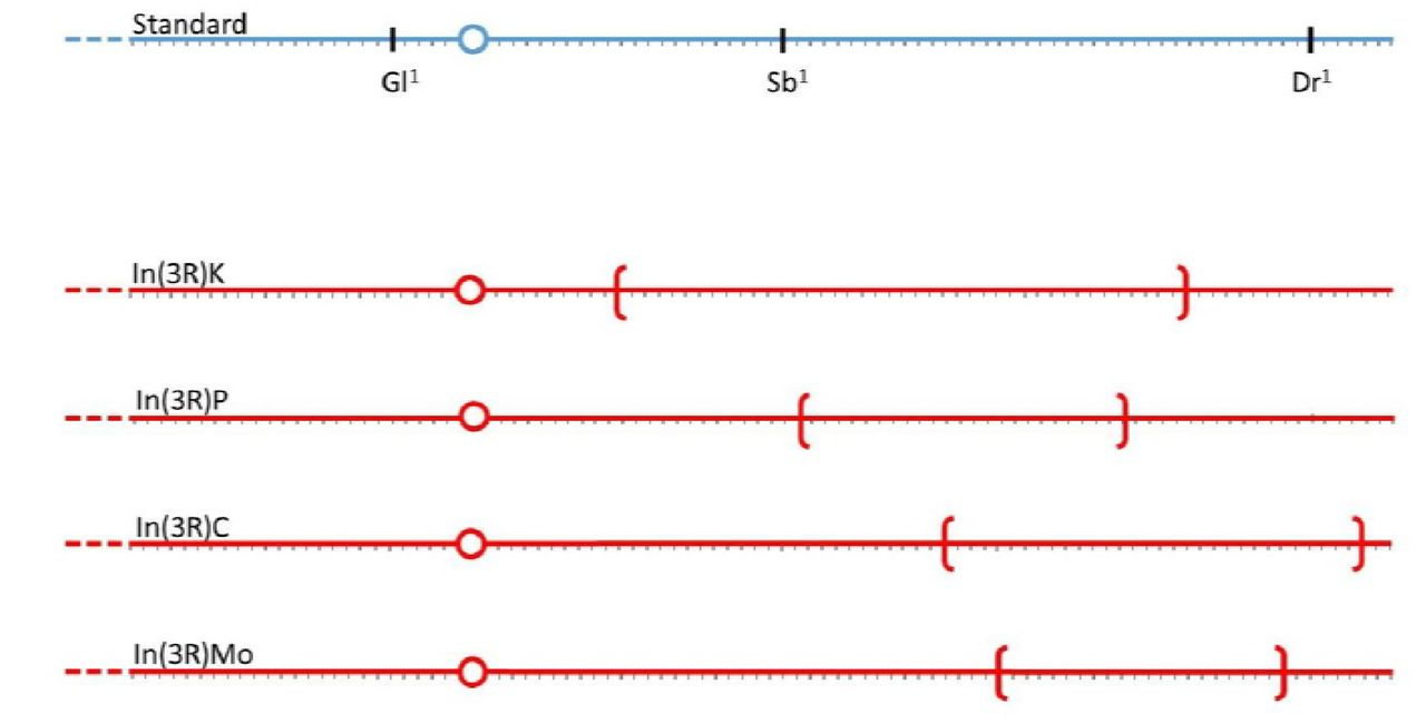 on drosophila linkage map