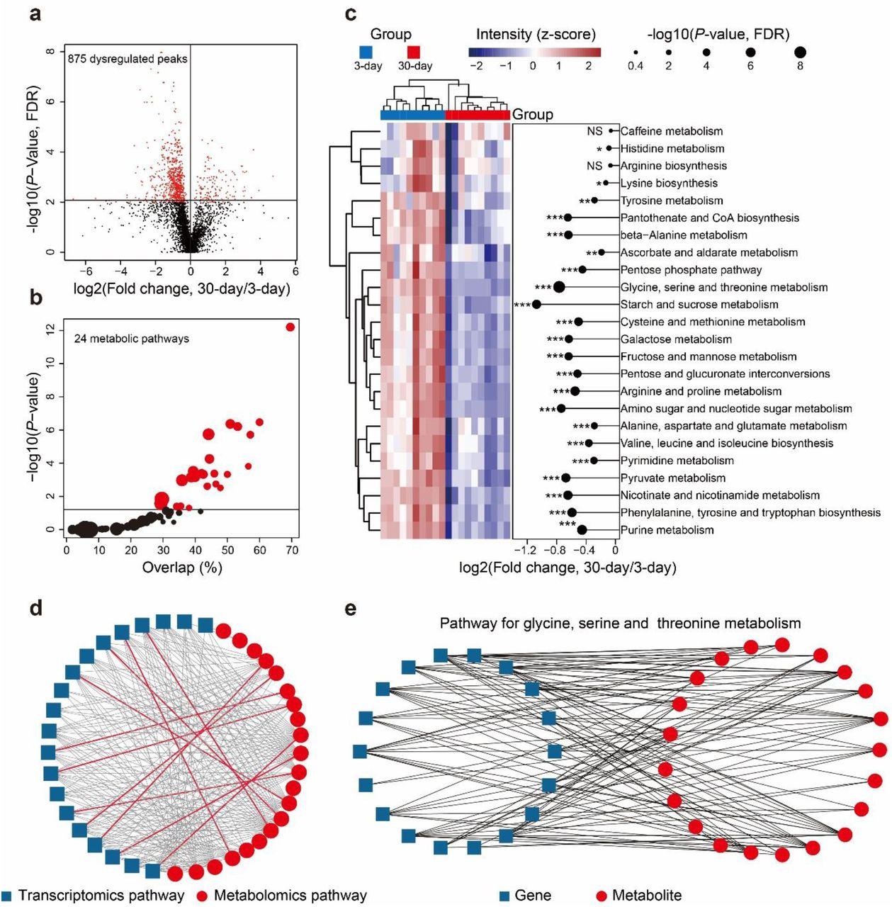 Metabolic Reaction Network-based Recursive Metabolite