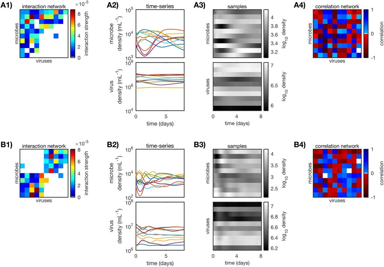 Correlations, interactions, and predictability in virus