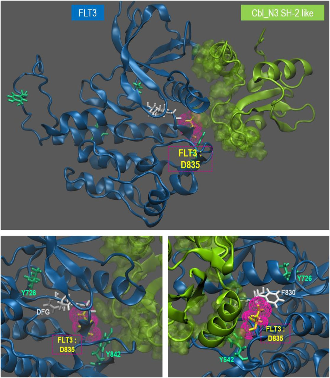 Short loop motif profiling of protein interaction networks in acute