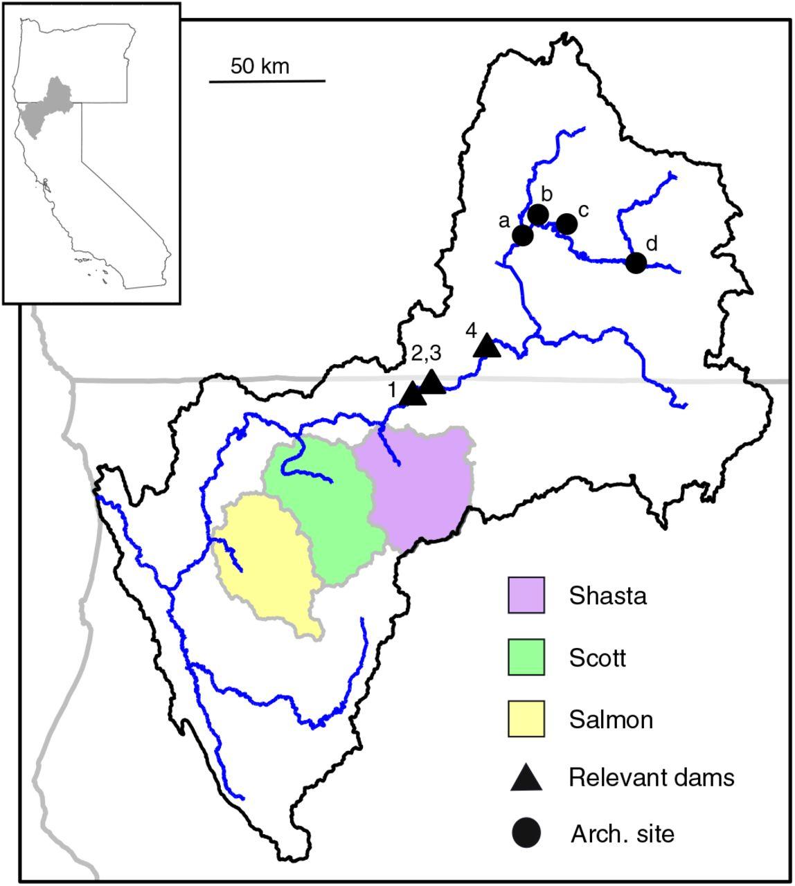 Anthropogenic habitat alteration leads to rapid loss of adaptive