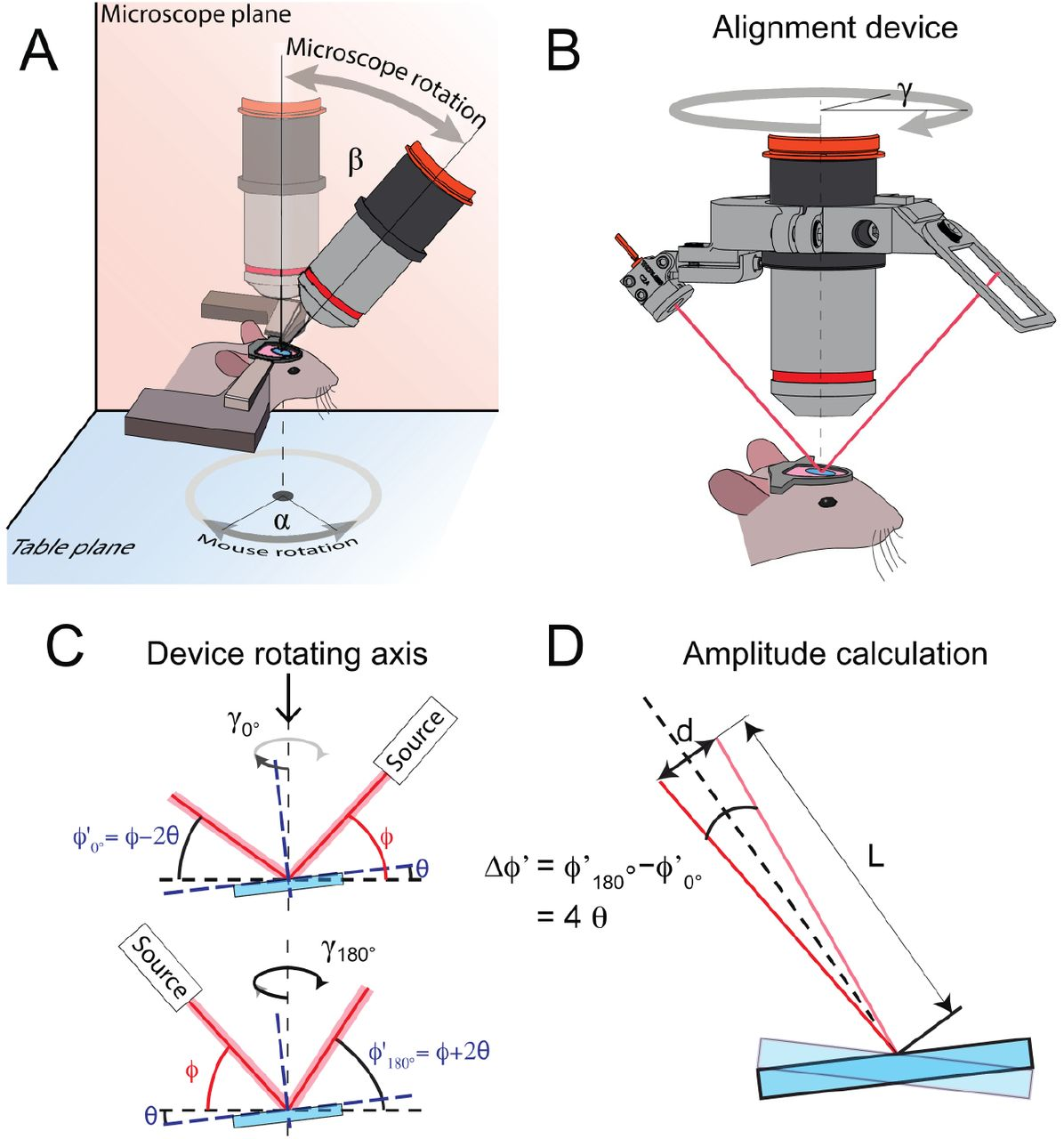 Optical alignment device for two-photon microscopy | bioRxiv