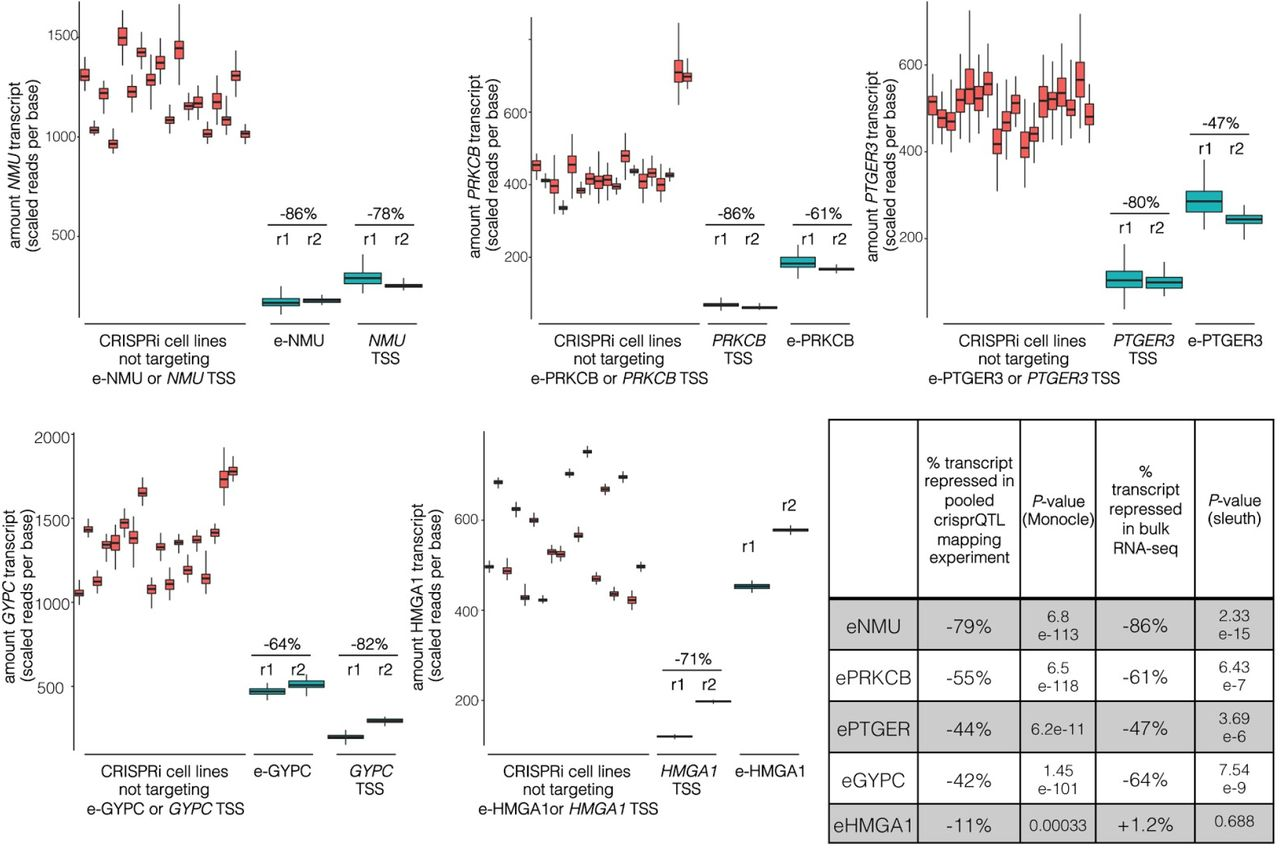 crisprQTL mapping as a genome-wide association framework for