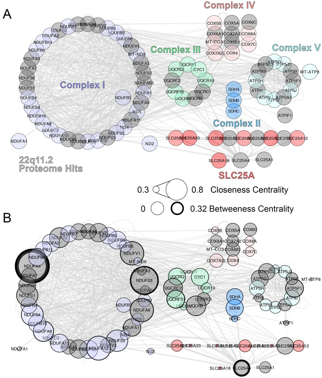 Systems Analysis of the 22q11 2 Microdeletion Syndrome Converges on