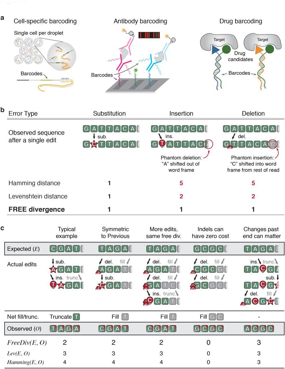 Error-correcting DNA barcodes for high-throughput sequencing
