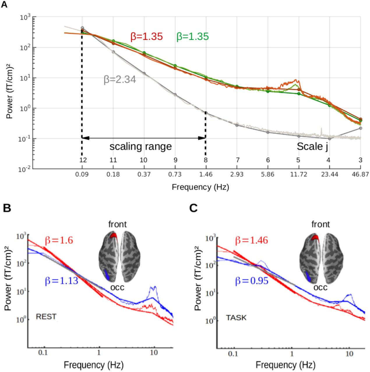 Self-similarity and multifractality in human brain activity