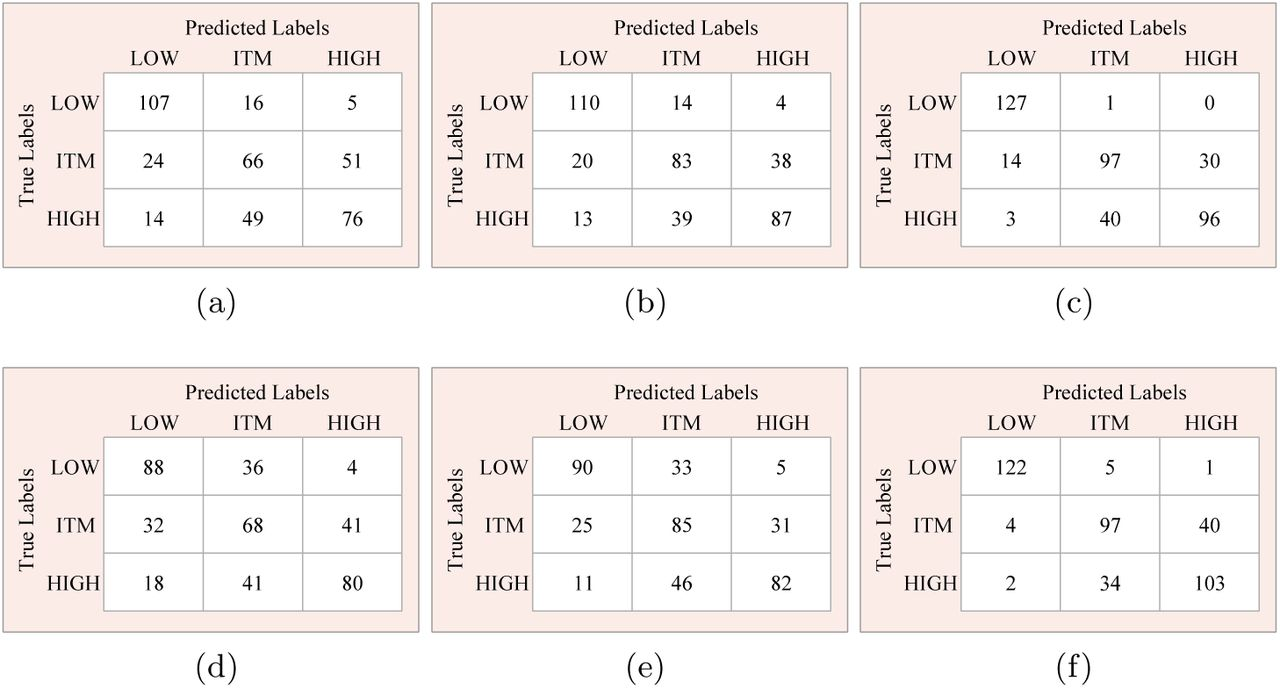 Automatic Classification of Prostate Cancer Gleason Scores