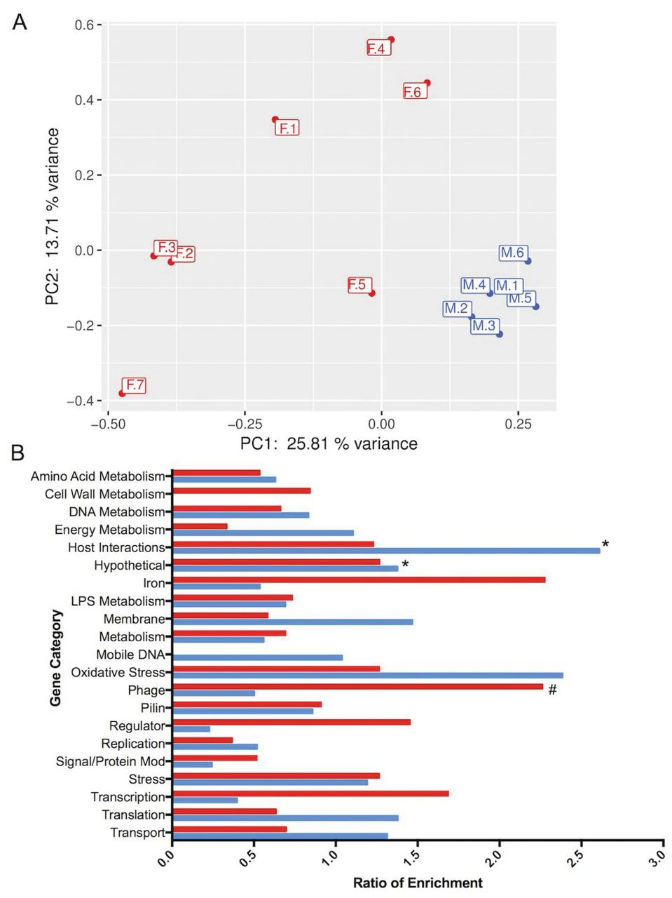 Transcriptome Analysis of Neisseria gonorrhoeae During