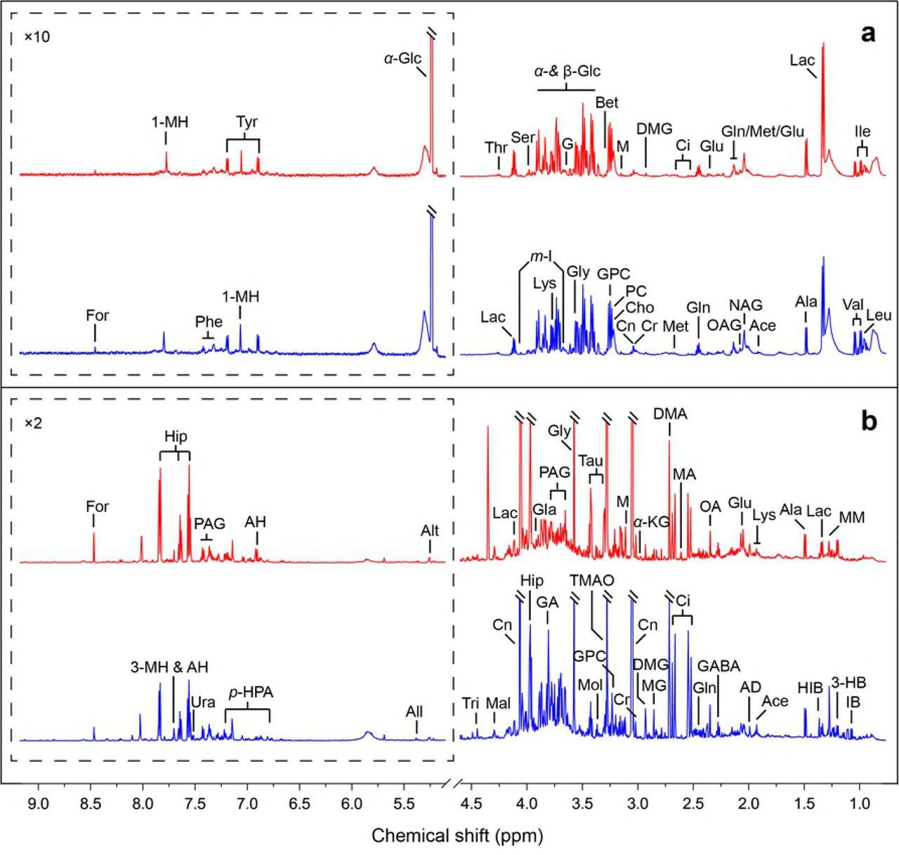 Deciphering the metabolic perturbation in hepatic alveolar