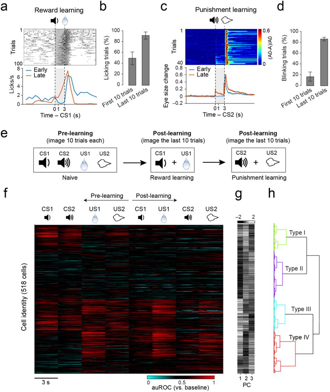 Population coding of valence in the basolateral amygdala