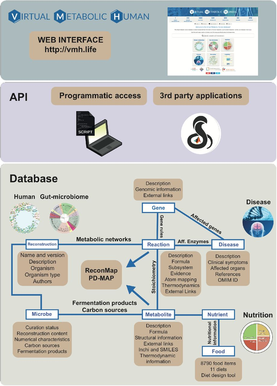 food database download