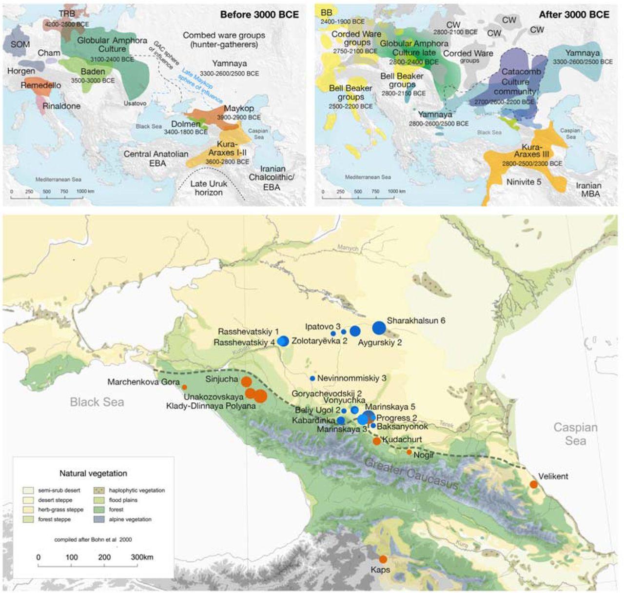 The genetic prehistory of the Greater Caucasus | bioRxiv