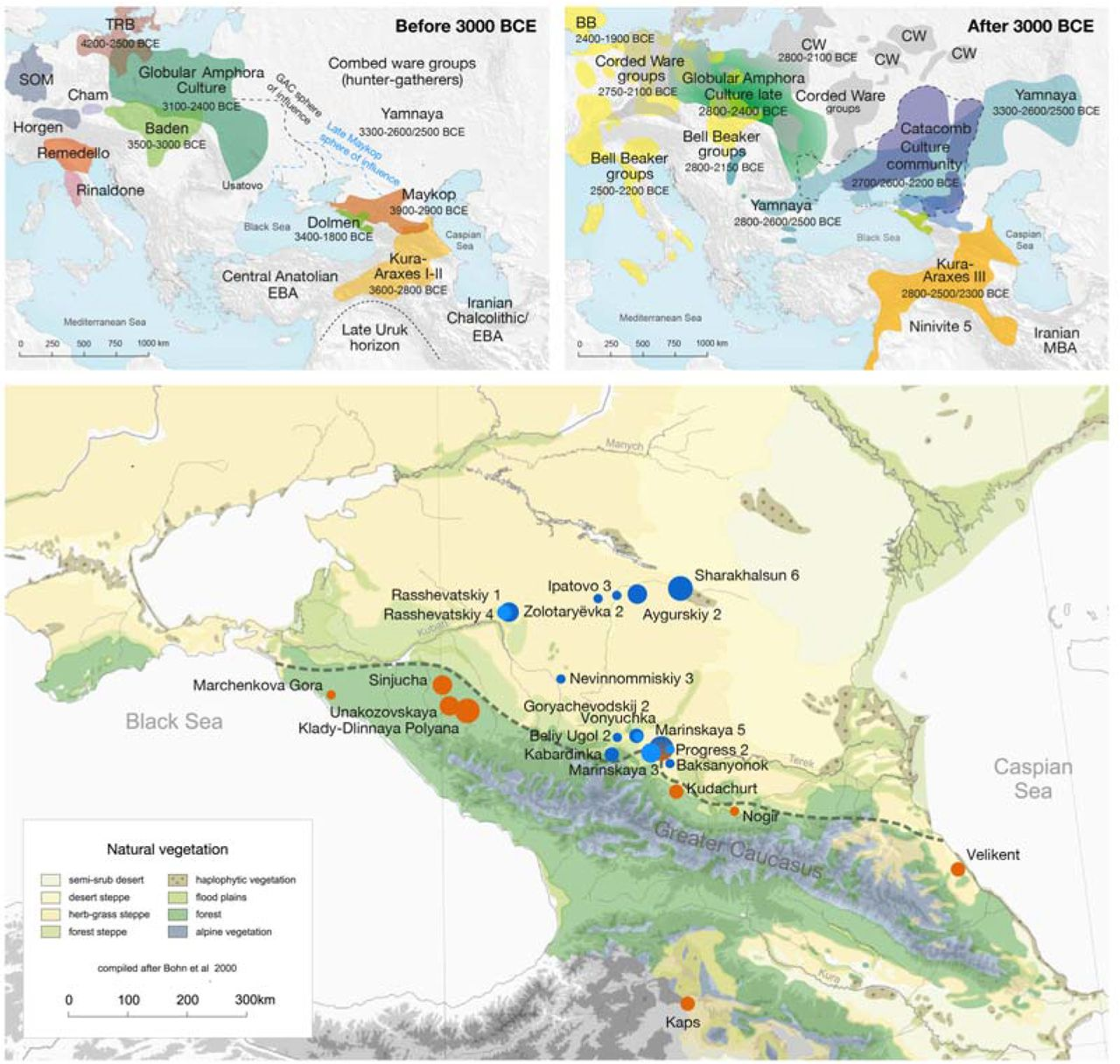 The genetic prehistory of the Greater Caucasus | bioRxiv