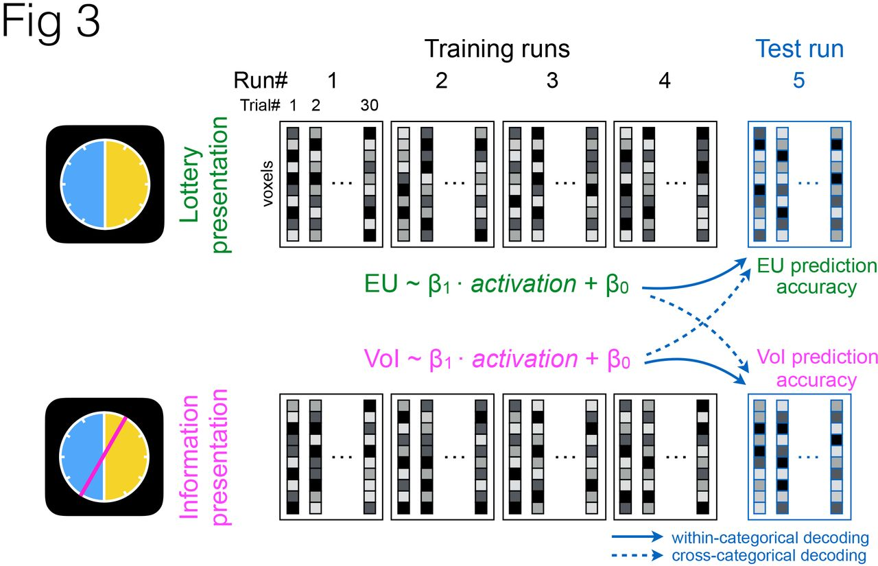 Common Neural Code for Reward and Information Value | bioRxiv