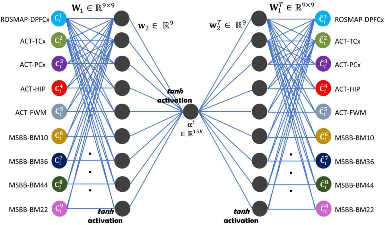 A probabilistic approach to using big data reveals Complex I