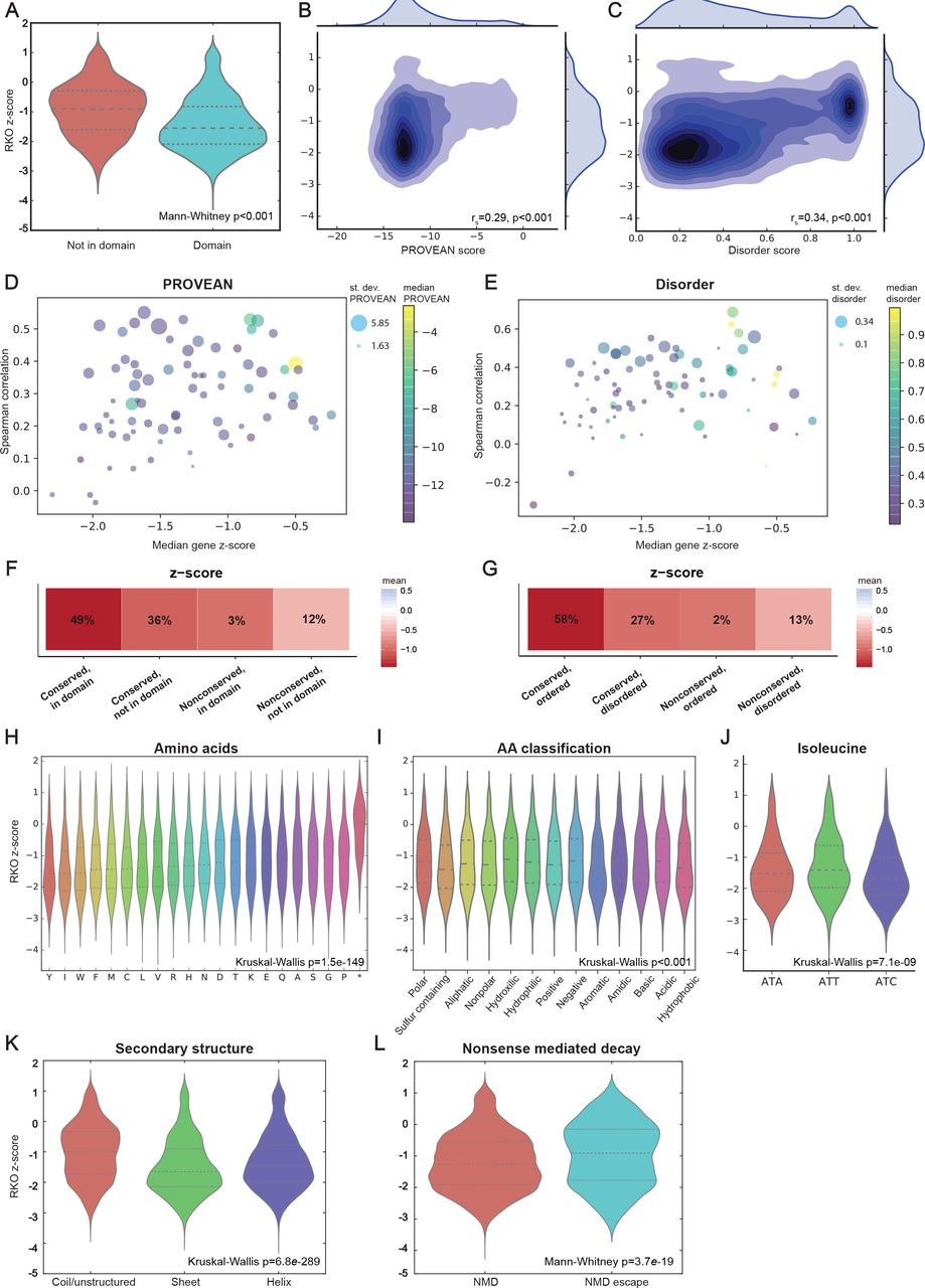CRISPRO Identifies Functional Protein Coding Sequences Based