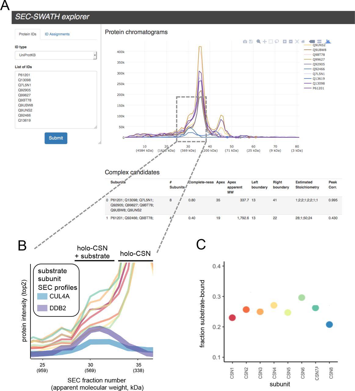 Complex-centric proteome profiling by SEC-SWATH-MS | bioRxiv