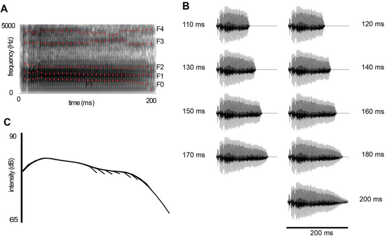 Auditory evoked potentials to changes in speech sound duration in