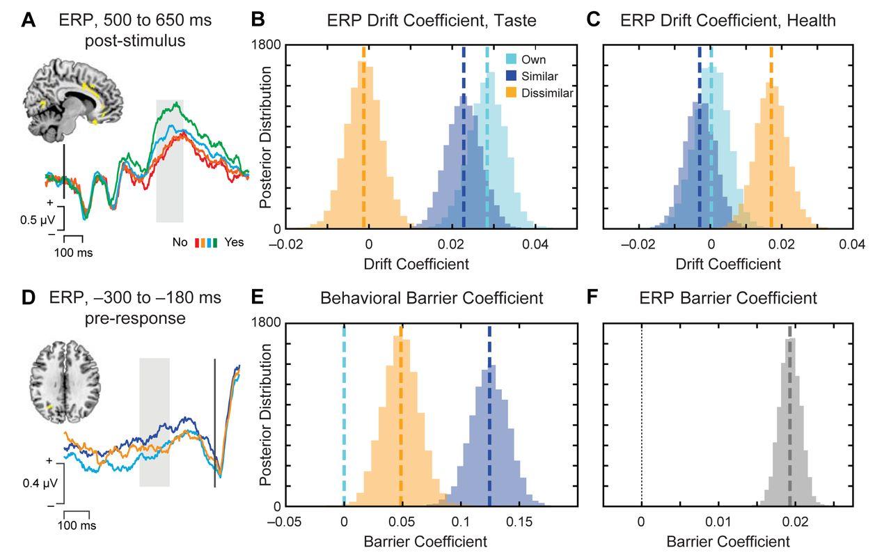 Accounting for taste: A multi-attribute neurocomputational