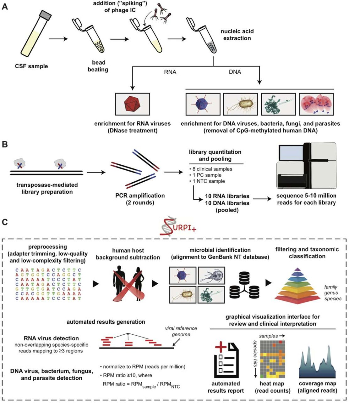 Laboratory Validation of a Clinical Metagenomic Sequencing Assay for