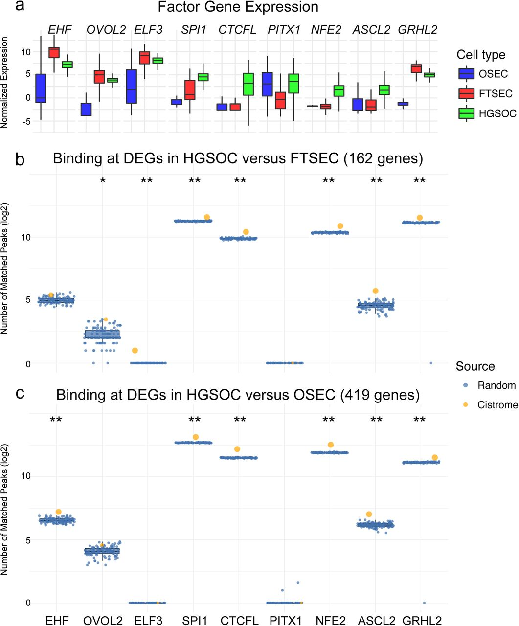 Integrated Molecular Profiling Studies to Characterize the Cellular