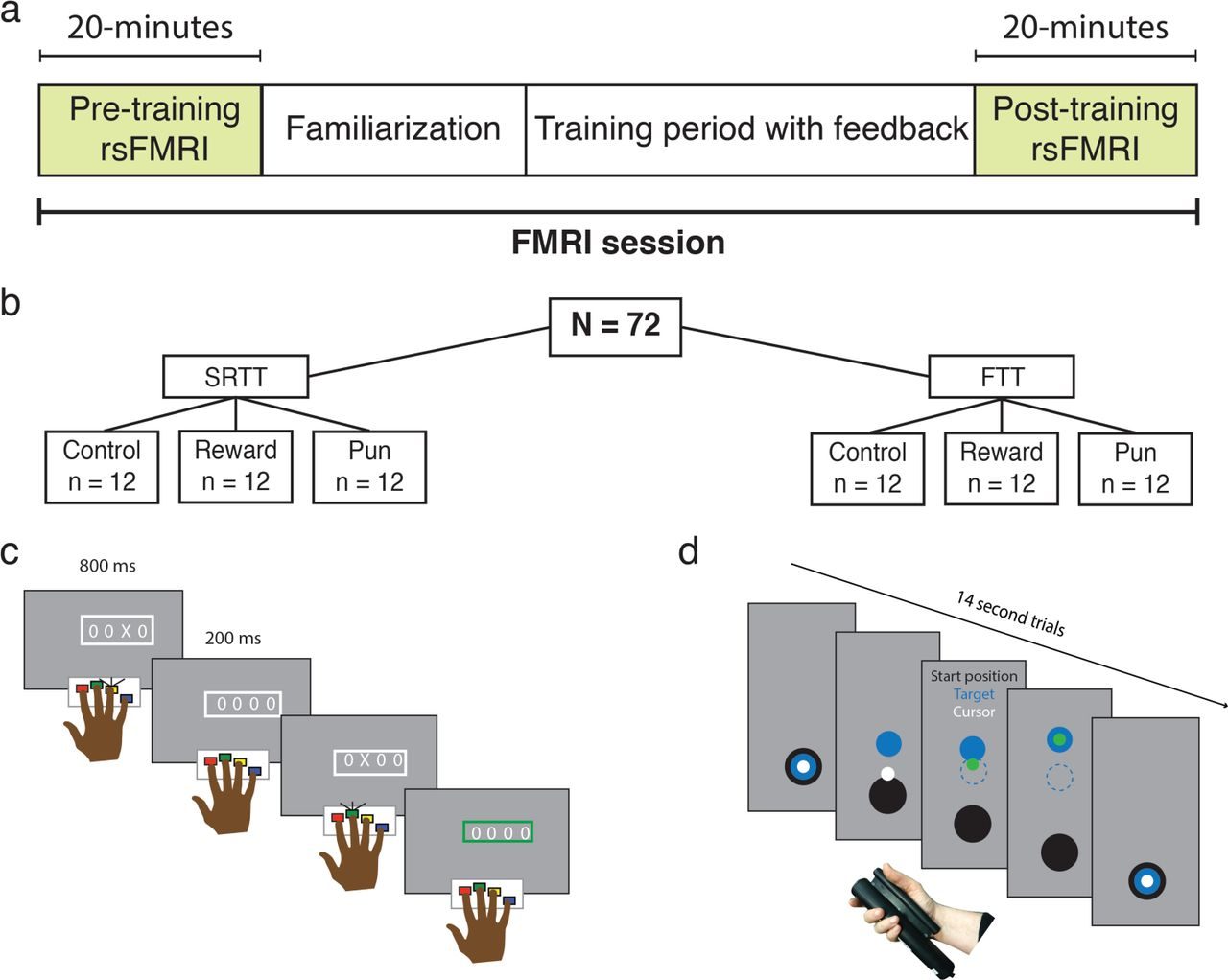 Differential impact of reward and punishment on functional