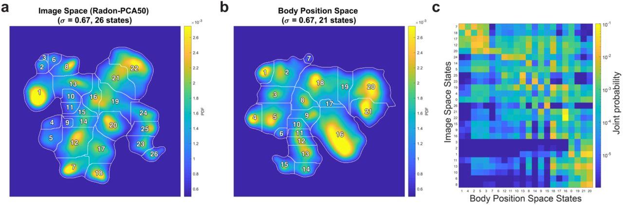 Fast animal pose estimation using deep neural networks   bioRxiv