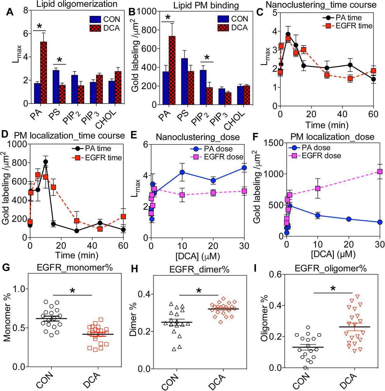 Bile acids target proteolipid nano-assemblies of EGFR and