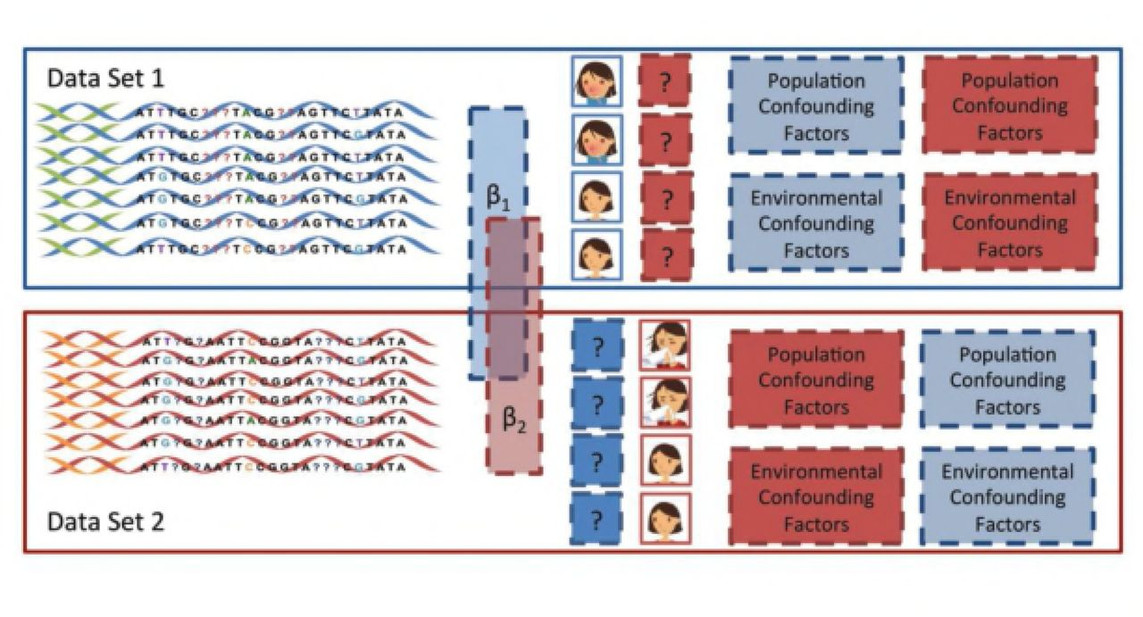 Coupled Mixed Model for joint genetic analysis of complex