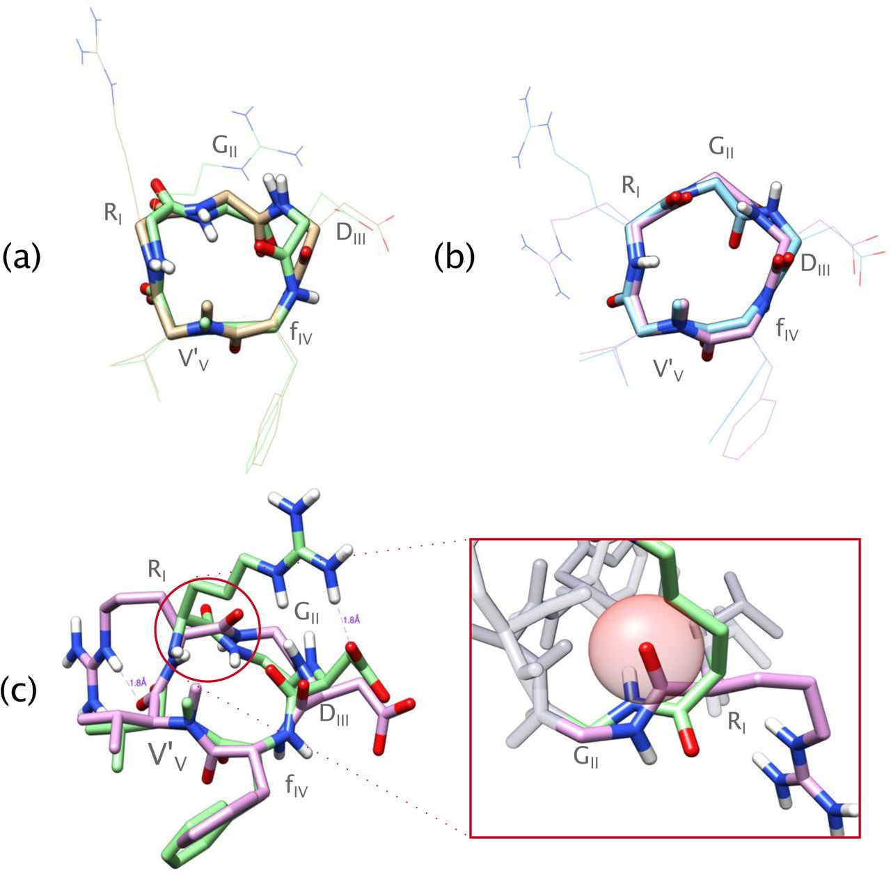 Exhaustive exploration of the conformational landscape of small