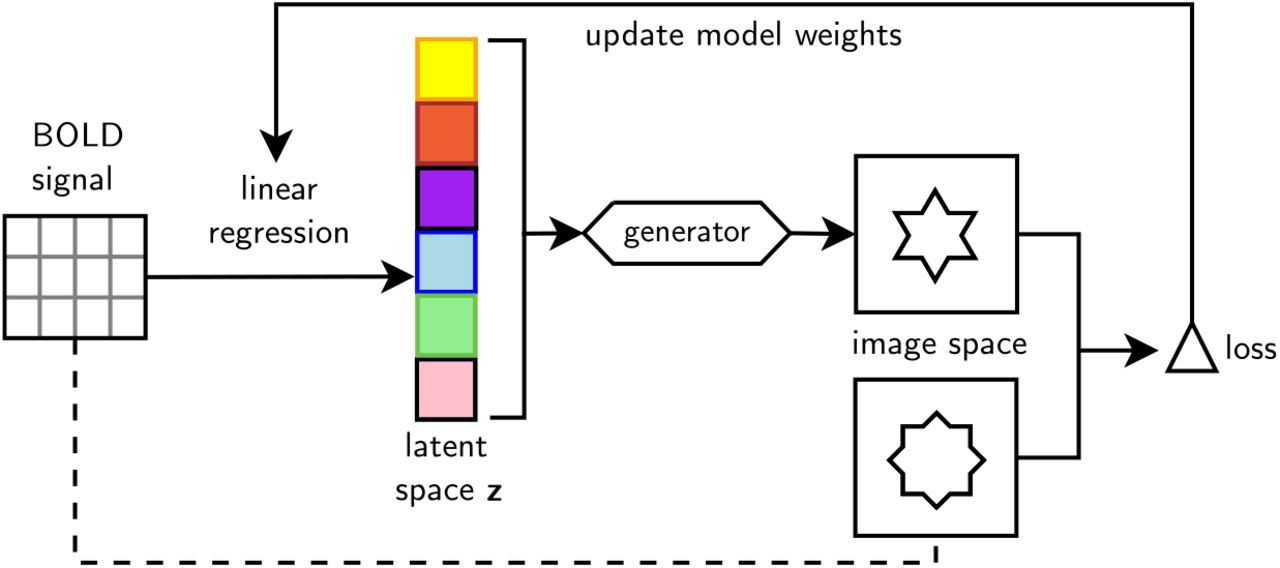 Generative adversarial networks for reconstructing natural images