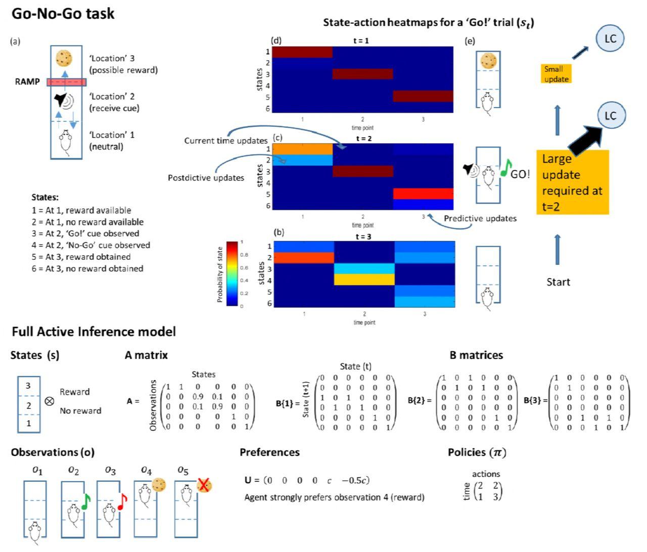 Locus Coeruleus tracking of prediction errors optimises